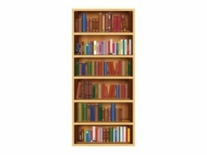 Bookcase Exit Diversion Door Wrap